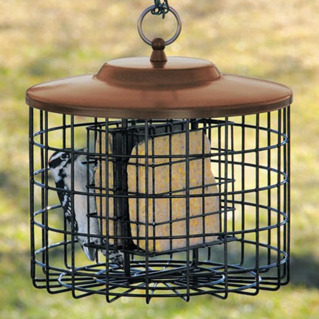 Squirrel-Proof Bird Feeders Suet Cage