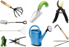 Top 10 Garden Tools and How to Choose Them