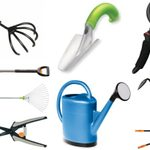 The Top 10 Essential Garden Tools List
