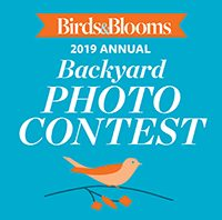 Contests & Promotions - Birds and Blooms
