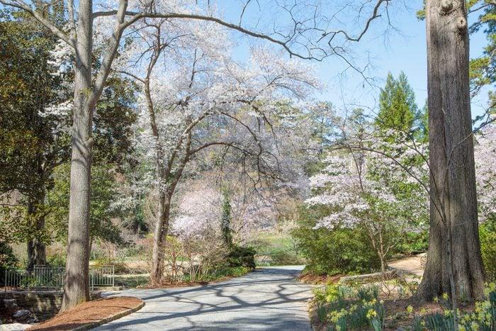 spring duke gardens