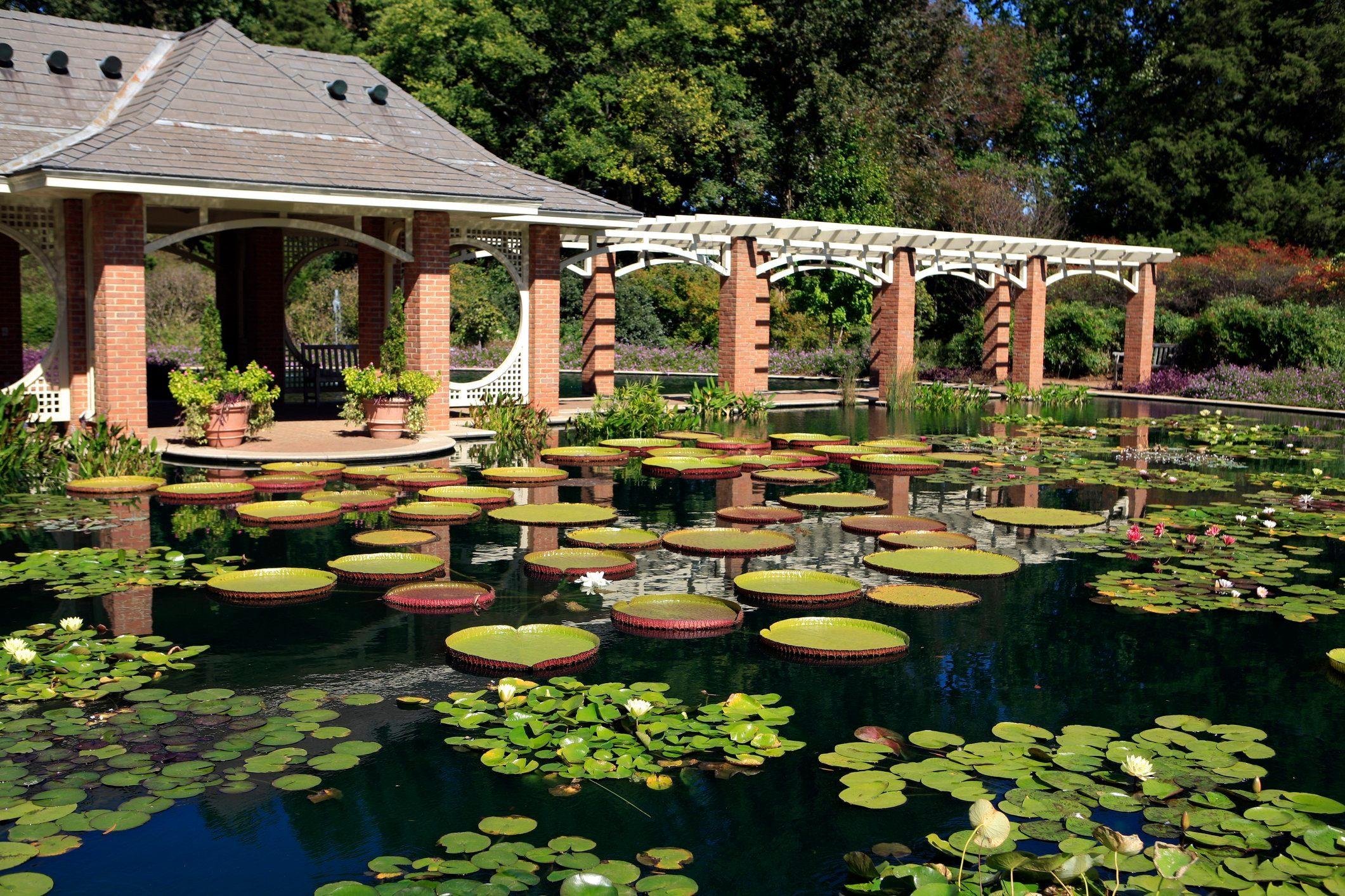 Huntsville Botanical Gardens Water Garden