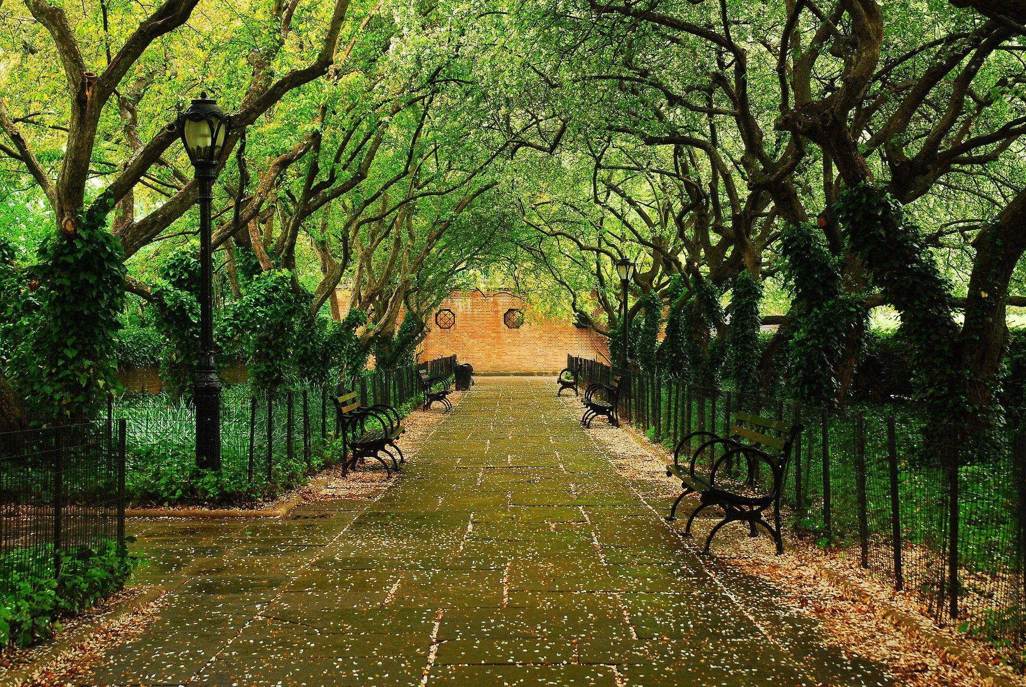Cental Park Converancy Gardens