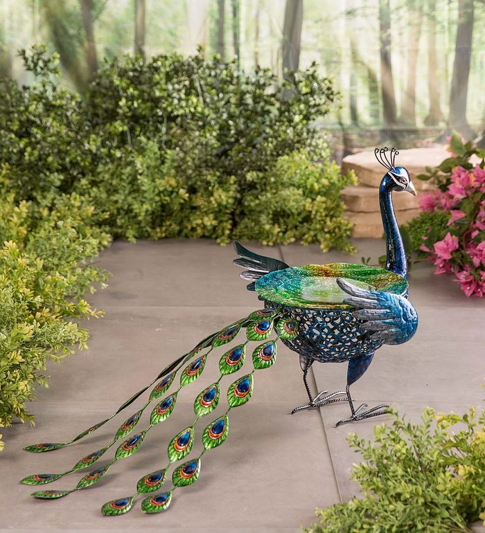 Metal peacock birdbath