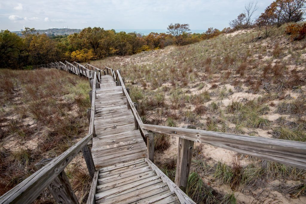 Indiana Sand Dunes State Park Fall Colors