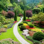 3 Must-See Attractions at Butchart Gardens