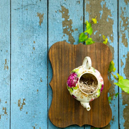 DIY Craft Projects That Will Attract More Birds to Your Yard