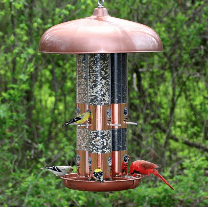 Tube bird feeder