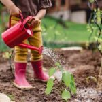Gardening with Kids: A Guide to Backyard Tasks for Every Age