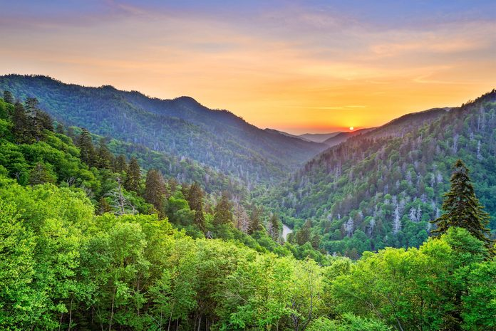 A scenic photo of Newfound Gap in the Great Smoky Mountains