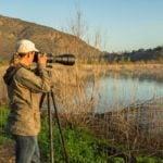 7 Ways to Be a Better Birder