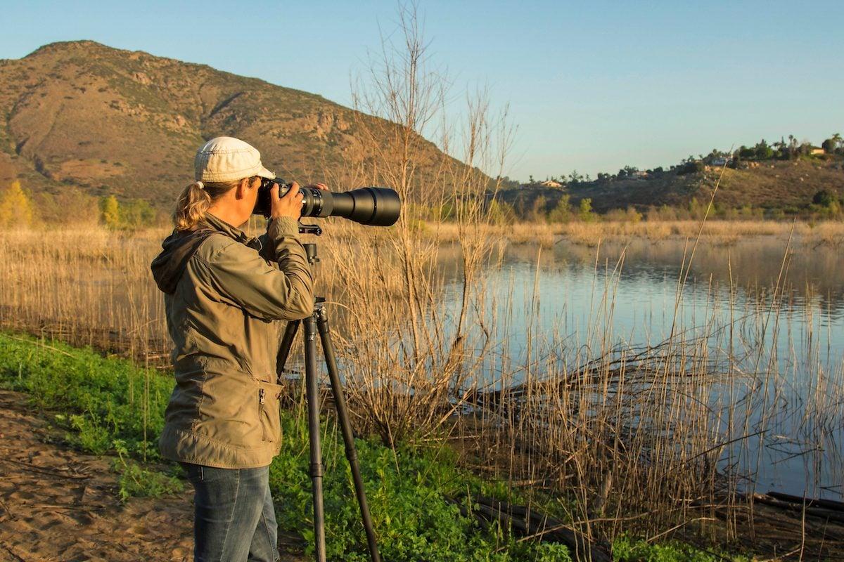 A photographer uses a long camera lens to get closeups of wildlife.