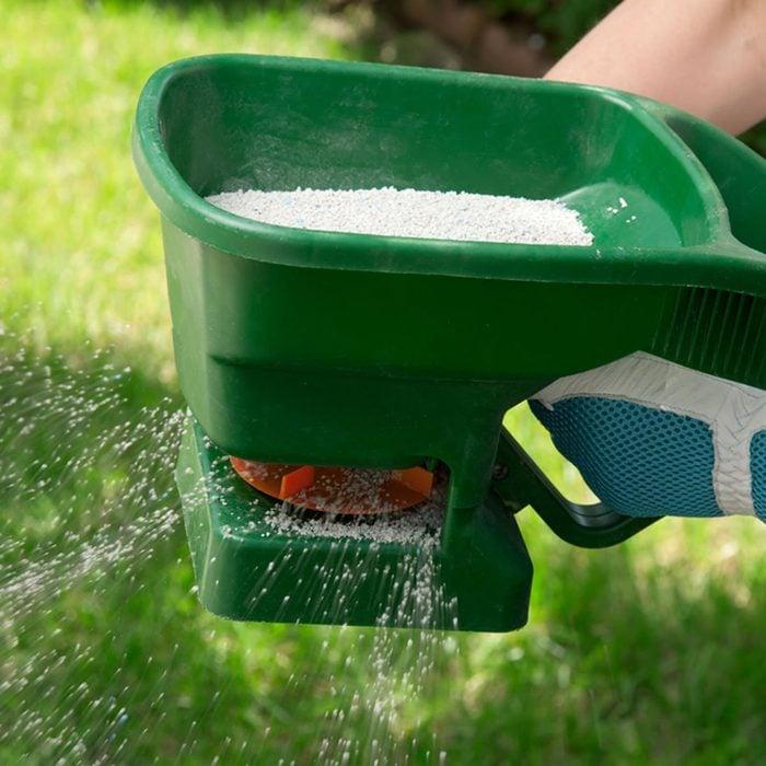 Fertilize lawn
