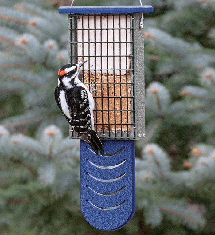 A woodpecker visiting a suet feeder.