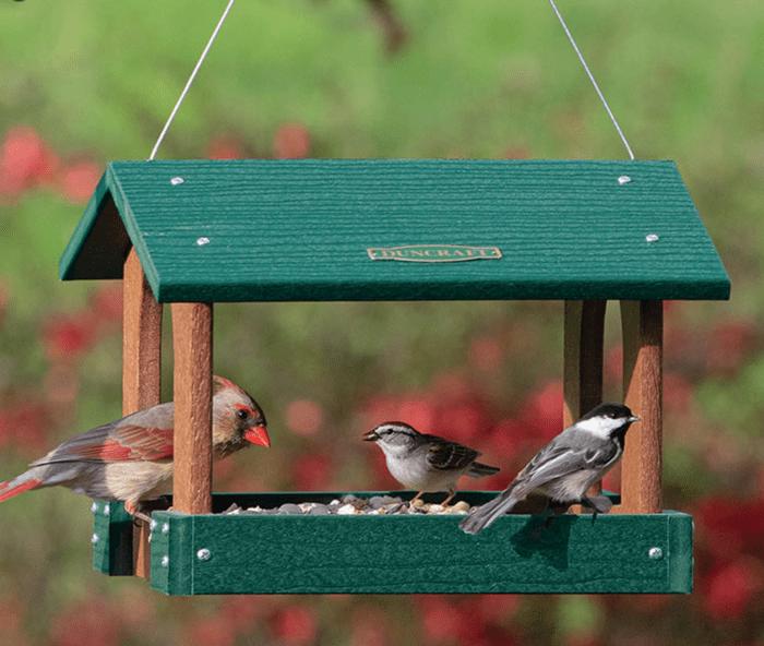 A female cardinal, sparrow and chickadee sitting at a platform feeder.