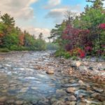 4 National Forests with Breathtaking Fall Foliage