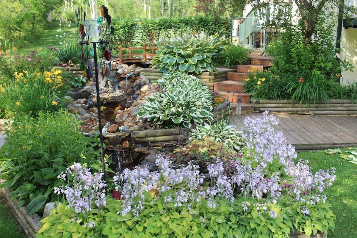 A garden brimming with hostas, daylilies and other perennials.