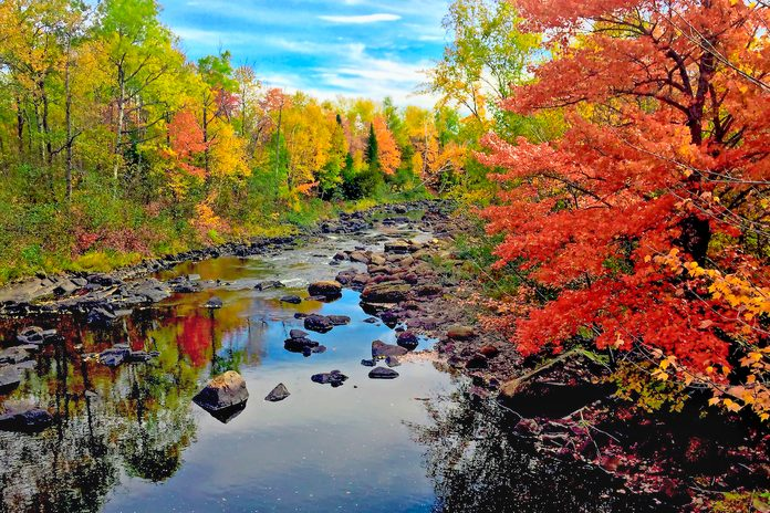 Fall in Piscataquis County, Maine