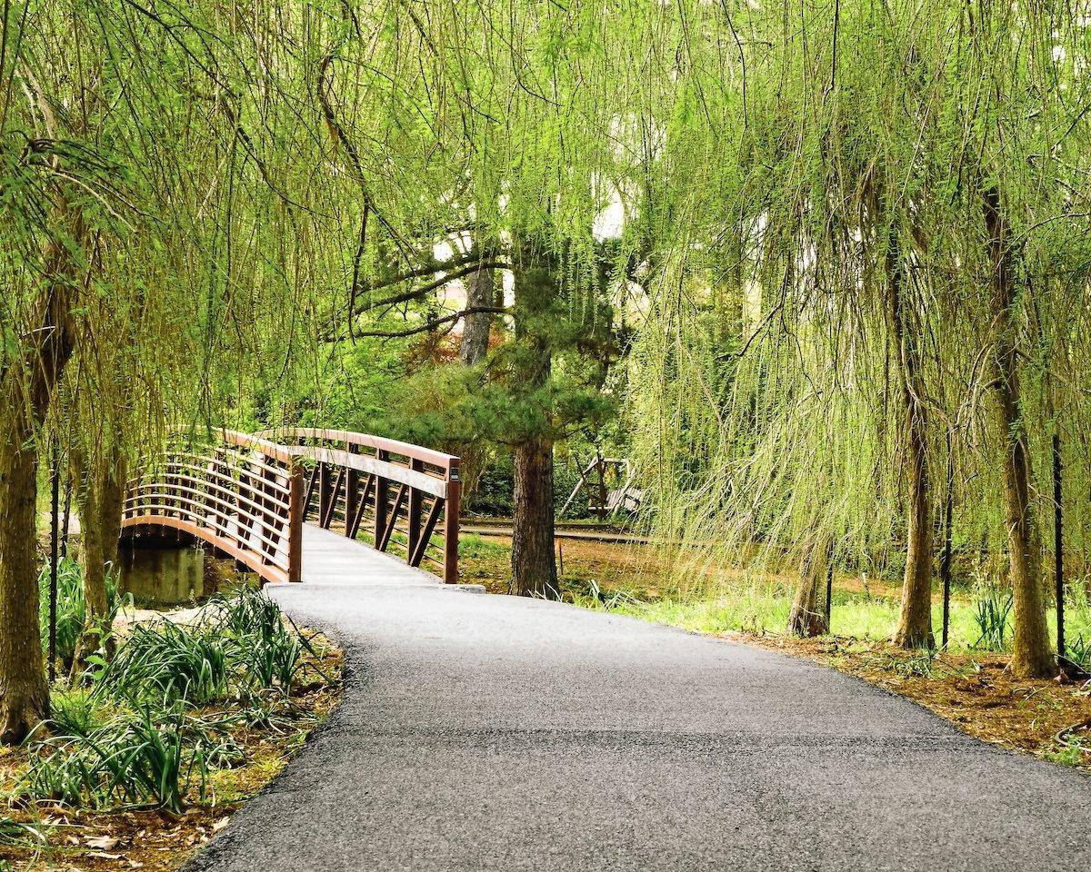piney woods arboretum