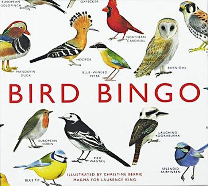 Bird Bingo Game