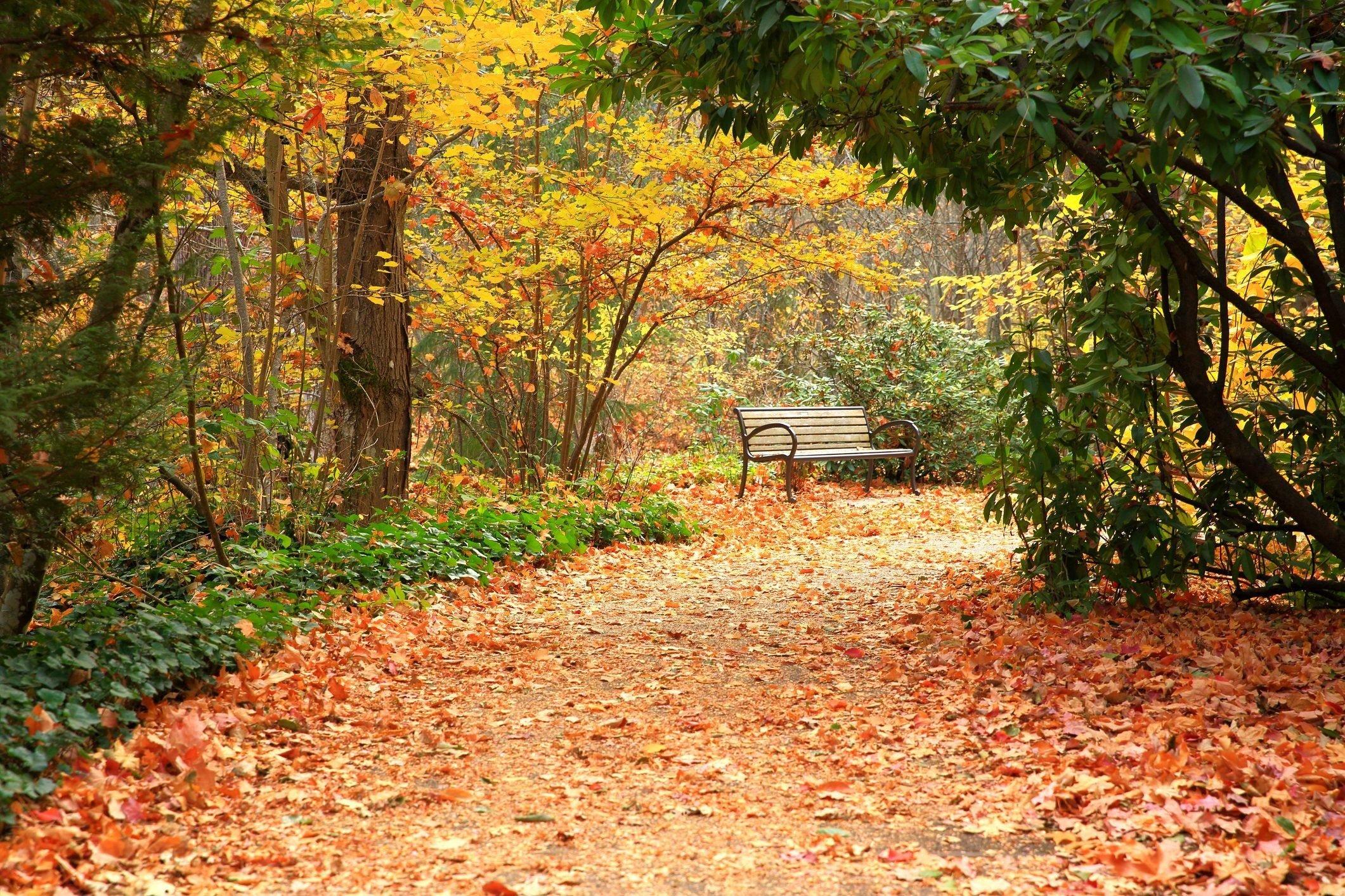 Lithia Park in Autumn, Oregon-USA