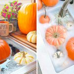 How to Preserve a Pumpkin the Right Way