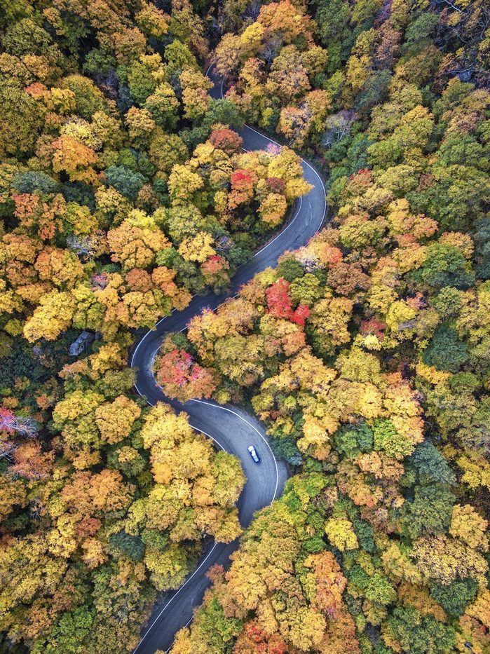 An aerial view of fall colors along route 108 in Smuggler's Notch Vermont