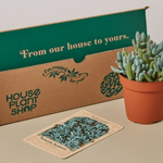 8 Plant Subscription Boxes You'll Love to Unbox
