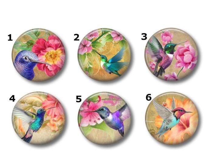hummingbird magnet set