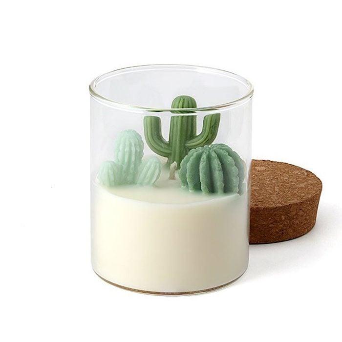 Cactus terrarium candle