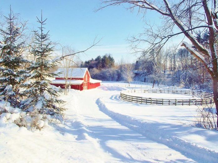 Winter scene with a red barn, fir trees and a horse corral covered in snow.