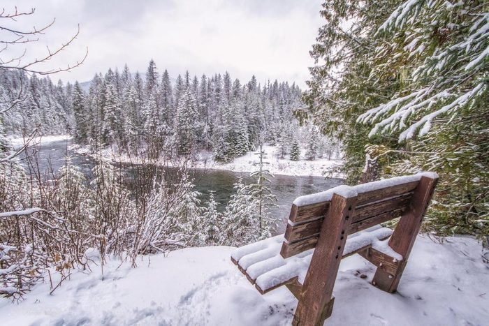 Winter scene with a snow-covered bench overlooking woods and a pond