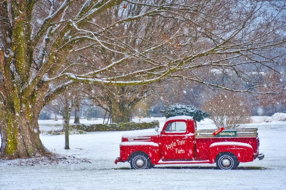 An old red truck parked under a tree in a snowy winter scene.