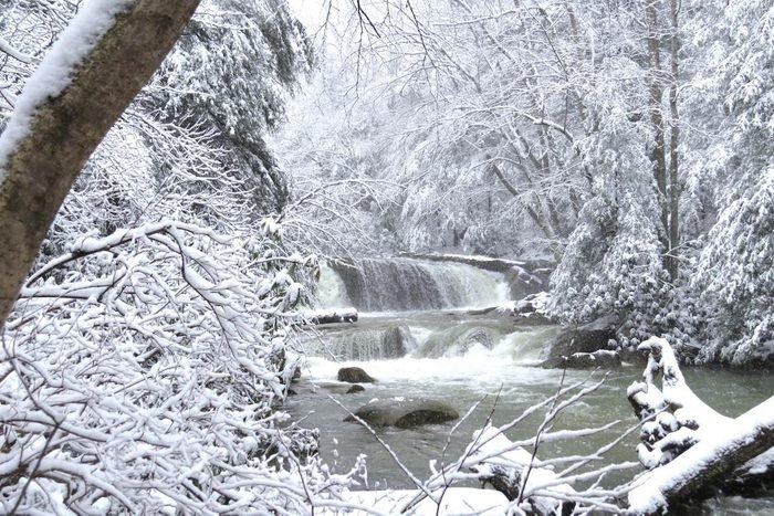 A waterfall on a frozen river with snow-covered trees on the banks.