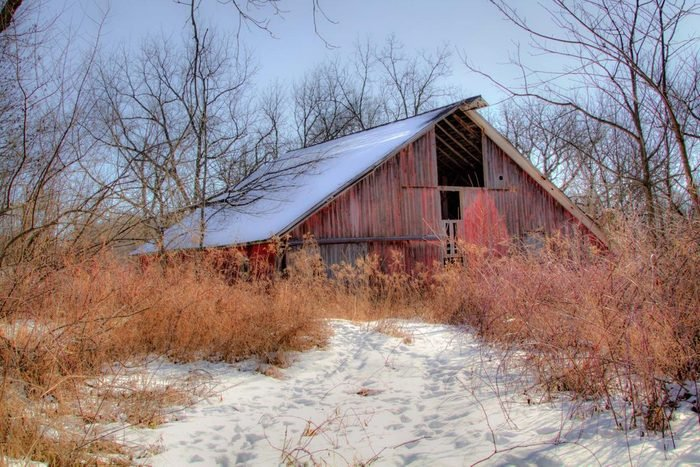 Old abandoned barn seen through grasses and a snow-covered path.
