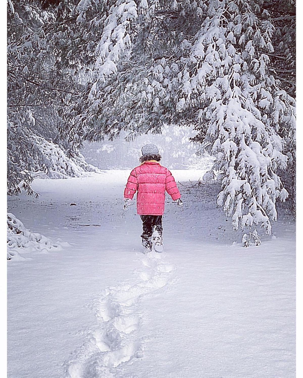 A little girl in a pink jacket walking between the trees in the snow.