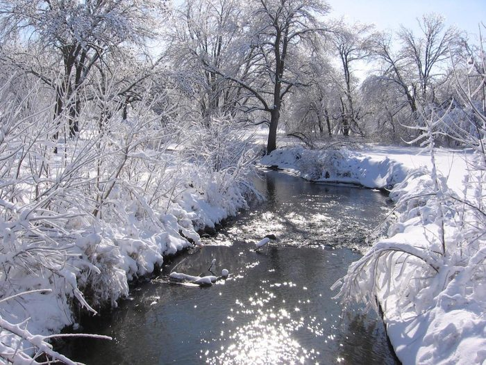 Winter view of a flowing river with snow-covered banks and trees.