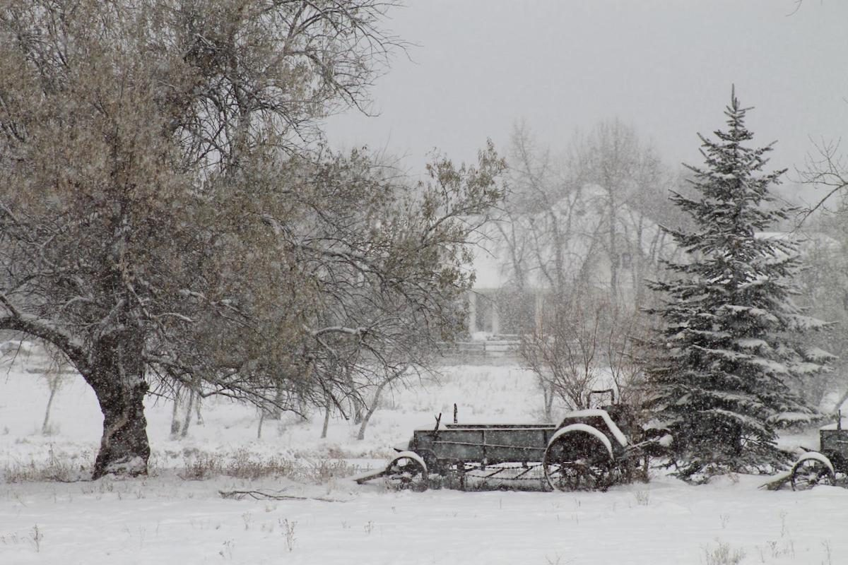 Old Farm equipment in a snowstorm.