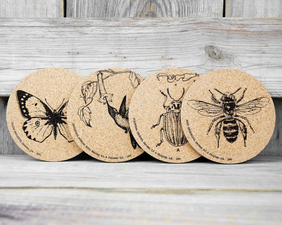 cork coasters butterfly gifts