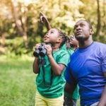 How to Start Birding: Bird-Watching for Beginners