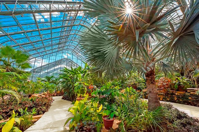 Lauritzen Gardens Conservatory