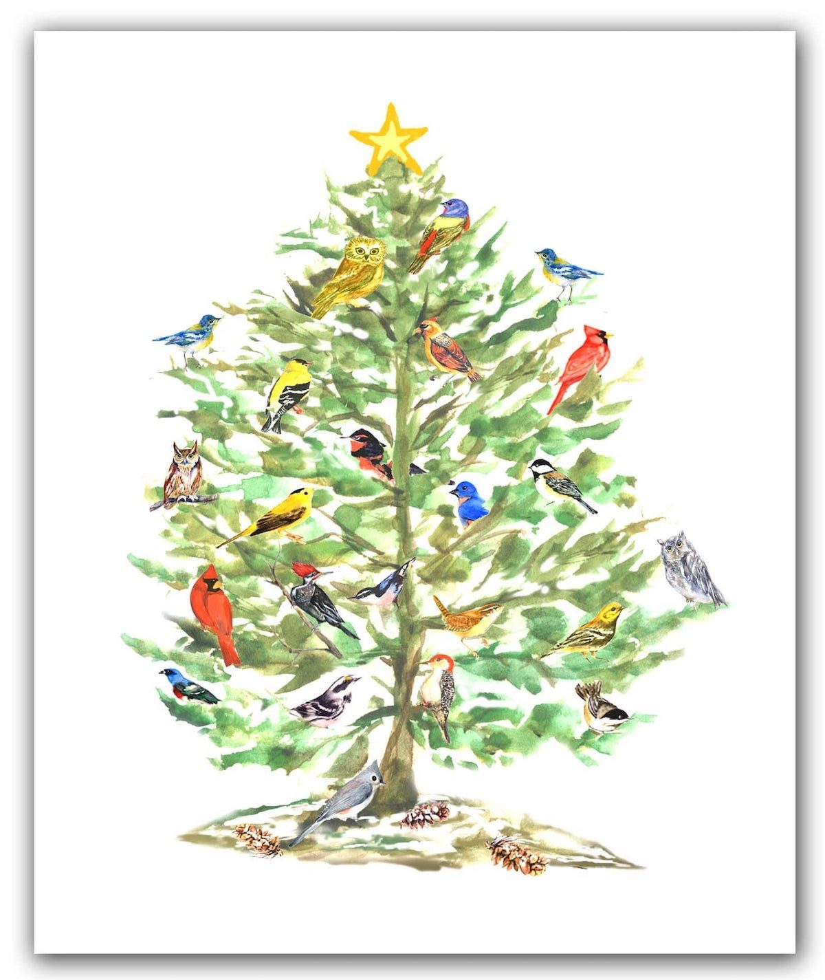 songbird christmas card