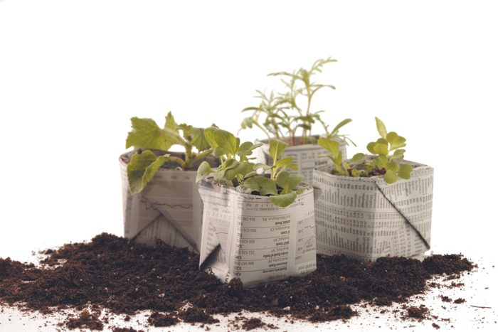 how to make newspaper pots