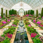 Missing Flowers in Winter? Visit a Conservatory!