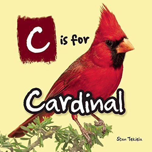 cardinal kids book