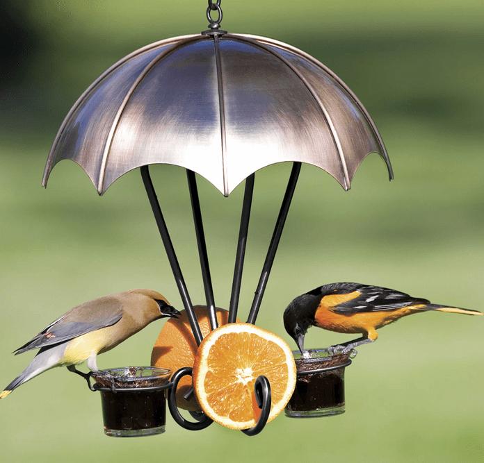copper oriole feeder