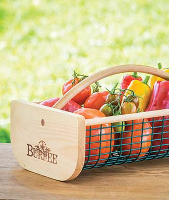 garden hod basket