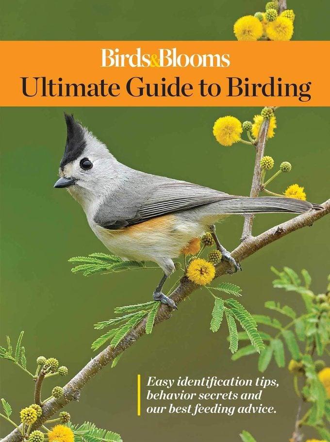 birds & blooms book