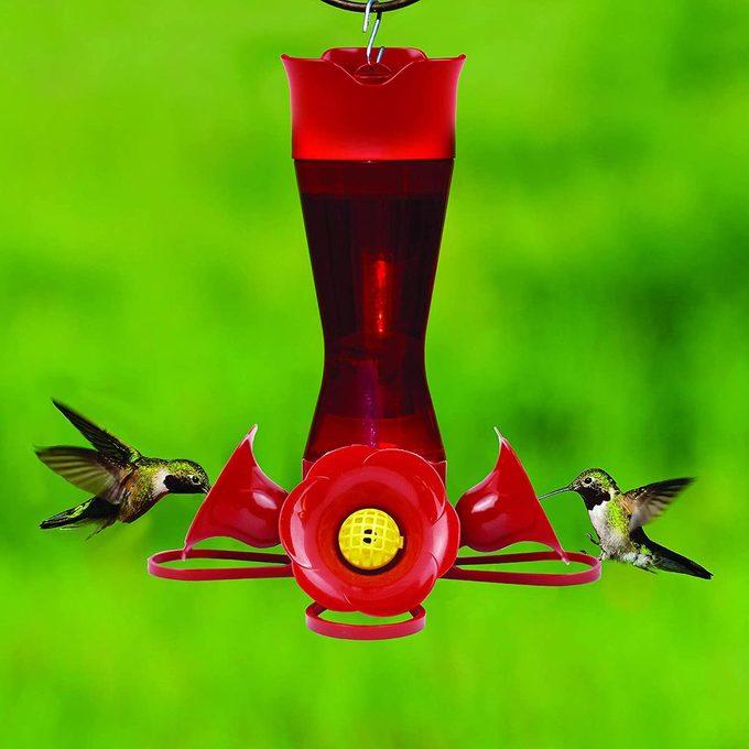 plastic hummingbird feeder