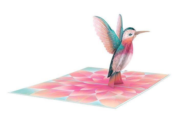 Lp2400 Lovely Hummingbird Overview 1024x1024